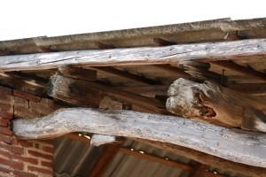 Img 28 Cascina-Bellaria