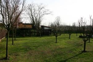 Img 33 Cascina-Bellaria parco