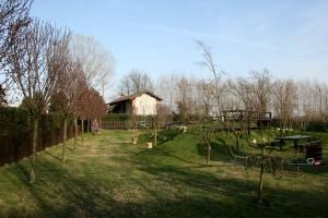 Img 35 Cascina-Bellaria parco