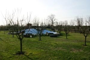 Img 42 Cascina-Bellaria parco